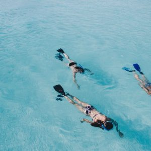 Snorkeling While Visiting Turks And Caicos